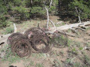 Huerfano State Wildlife Area Trail Work @ Huerfano State Wildlife Area